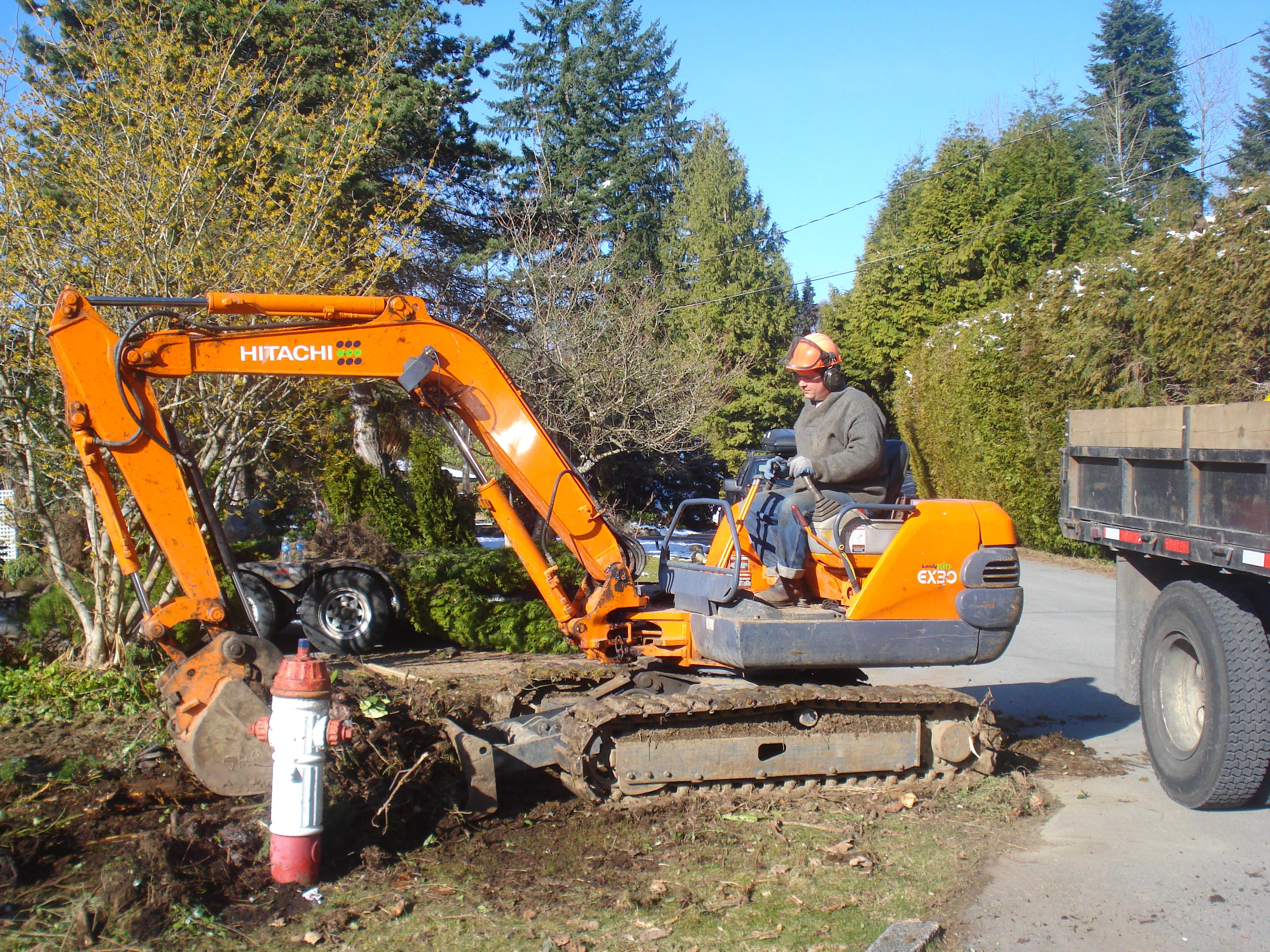Srp Enterprises Weblog: Replacing Your Hedge To Reclaim Your Driveway